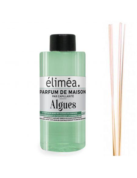 Parfum de maison Algues